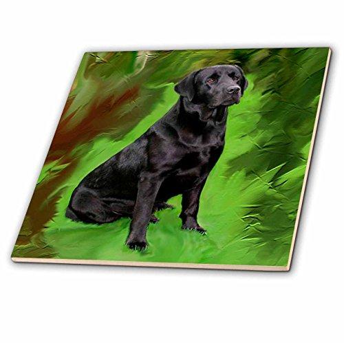 Black Labrador Porcelain - 3dRose ct_3892_2 Black Labrador Retriever Ceramic Tile, 6-Inch