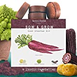 Nature's Blossom Exotic Vegetables Growing Kit. 4 Unique Plants To Grow From Seed. Beginner Gardeners Starter Set To Start Your Own Unusual Home Veg Garden. Gardening Project For Kids and Adults