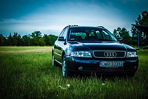 LAMINATED 36x24 Poster: Audi A4 Meadow Car Sky Grass Transpo