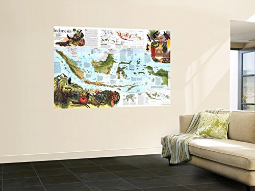 1996 Indonesia Theme Map Wall Mural by National Geographic Maps 48 x 72in by NATIONAL GEOGRAPHIC MAPS POD