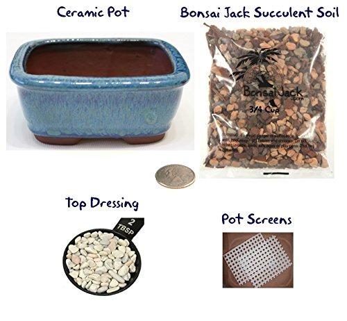 Soil Screen (Succulent Potting Kit(4 inch). Ceramic Bonsai Clay Pot, Soil, Screens and Top Dressing. 6 Pot Colors - Ocean Blue)