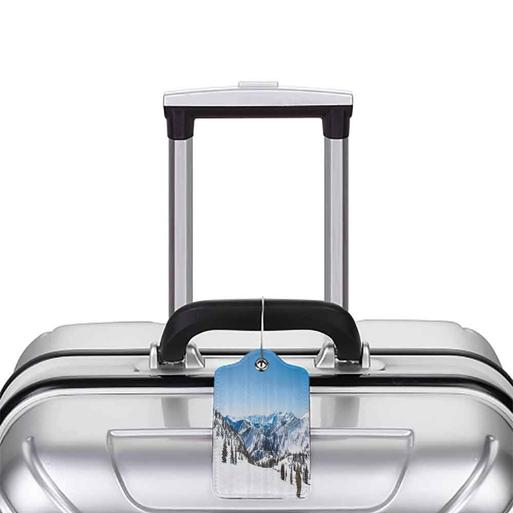 Decorative luggage tag Landscape Snowy Mountain Ridges the Alps Winter Scenery Trees Clear Sky Photo Suitable for travel Light Blue White Green W2.7 x L4.6