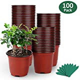 GROWNEER 100-Pack 4' Plants Nursery Pots for Seedling, Flower Plant Container Seed Starting Pots, Garden Plant Starters Kit w/ 100 Pcs Plant Labels