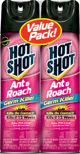 Hot Shot HG 14462 Aerosol 17 5 Ounce