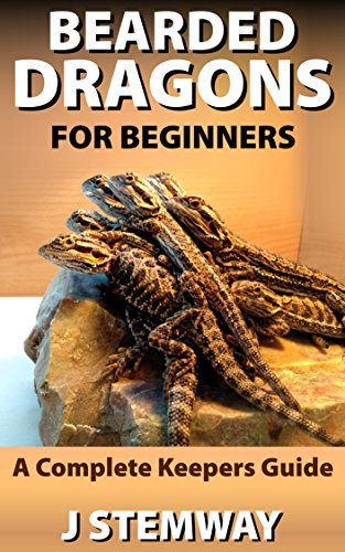 Bearded Dragons for Beginners: A Pet Owners Guide
