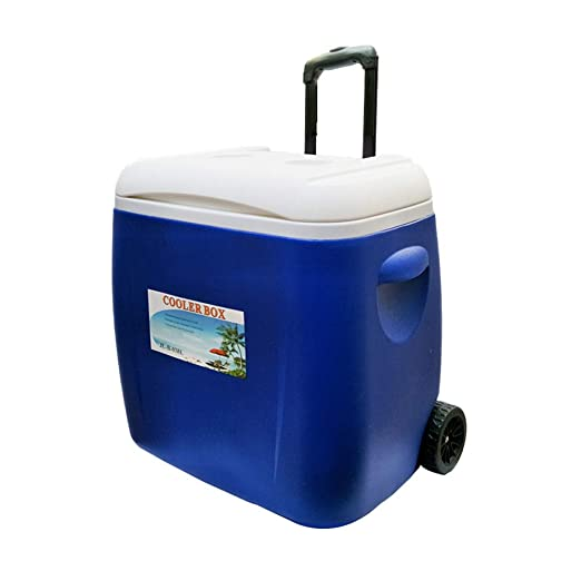 Rong Refrigerador Portátil - Mini Congelador, Se Puede Utilizar ...