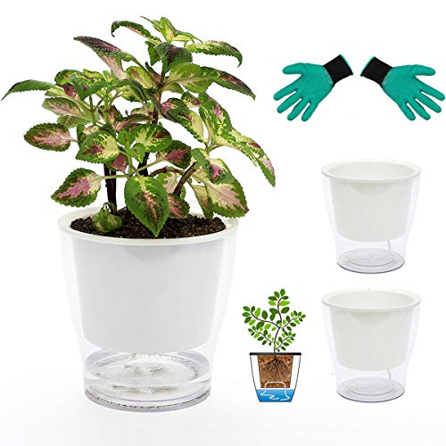 DeEFL 3 Packs 7 Inches Clear Self Watering Planters Large