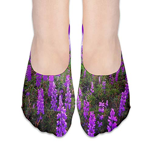 No Show Socks Purple Lavender Cool Womens Low Cut Sock Athletic Invisible Socks for Girl