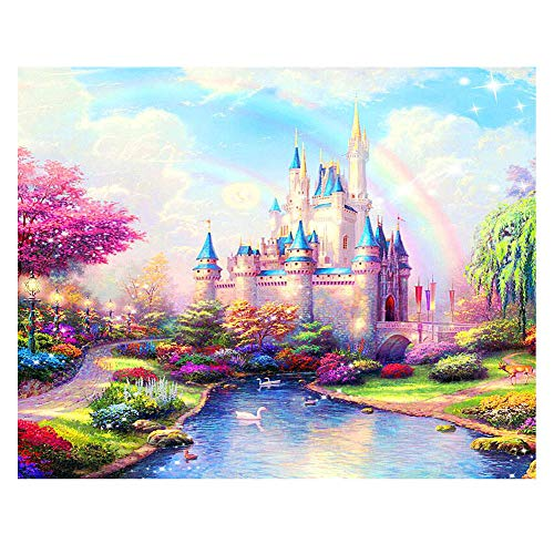 DIY Paint by Numbers for Adults Kids Paint by Numbers Disney Castle DIY Painting Acrylic Paint by Numbers Painting Kit Home Wall Living Room Bedroom Decoration Rainbow ()