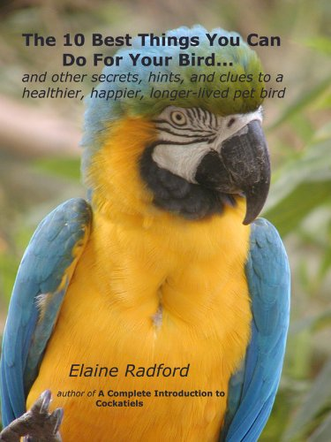 Canary Birds Pet (The 10 Best Things You Can Do For Your Bird: Secrets from Real Parrot, Finch, and Canary Owners (the Radford pet bird care series Book 1))
