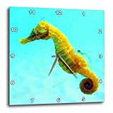 3dRose dpp_194379_3 Seahorse. Wall Clock, 15 by 15-Inch Review