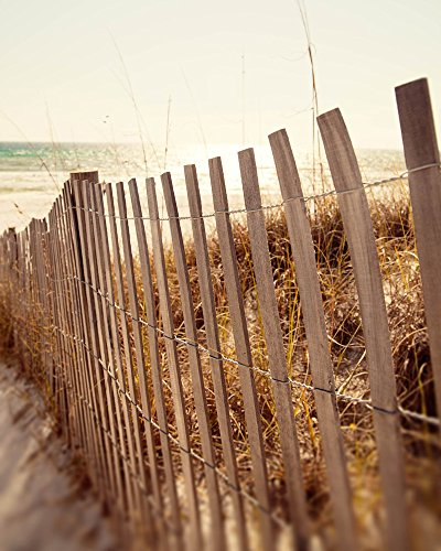 Beach Fence Landscape Fine Art Photography Print Cottage Home Decor Large Living Room Art