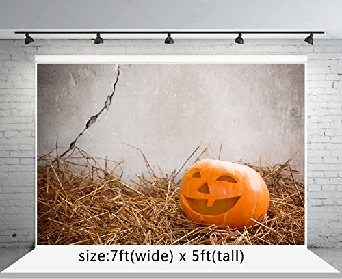 Kate 7x5ft Mow Halloween Backdrops for Photoraphy Pumpkin Backgrounds Booth Props -