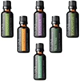 Aromatherapy Top 6 100% Pure Therapeutic Grade Basic Sampler Essential Oil Gift Basic sampler essential oil gift set 6-30ML (tea tree, sweet orange, lemongrass, eucalyptus, lavender, peppermint)