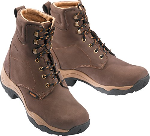 thème Dermo Equi Brun À Dry Boots Lacets OaO4wgx