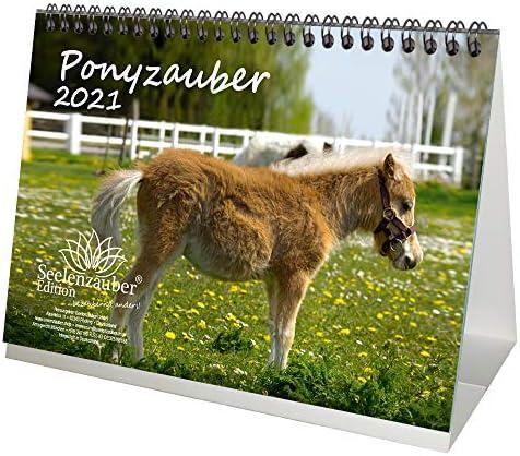 Ponyzauber DIN A5 Tischkalender für 2021 Pony und Fohlen - Geschenkset Inhalt: 1x Kalender, 1x Weihnachts- und 1x Grußkarte (insgesamt 3 Teile)