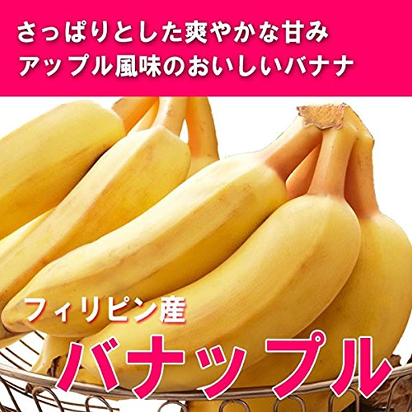 あごひげバーガー柔らかいグリーンバナナ (プラタノ) エクアドル産 250~350g