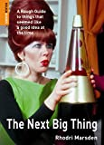 The Next Big Thing: A Rough Guide to things that seemed like a good idea at the time (Rough Guides Reference)