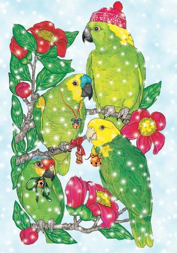 Pipsqueak Productions C872 Amazon Holiday Bird Christmas Boxed Cards - Pack of 10 ()