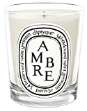 Diptyque Ambre Candle-6.5 oz