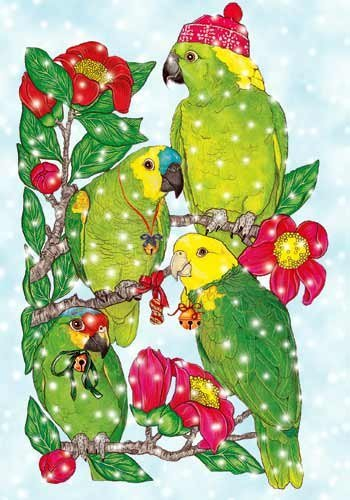 parrot christmas cards 10 holiday cards with red envelopes adorable