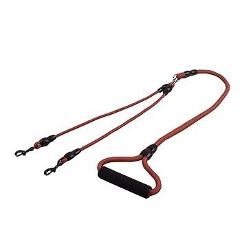 Biback Jogging Cuerda Hundeführ Cuerda 1 para 2 Ganchos de Doble ...
