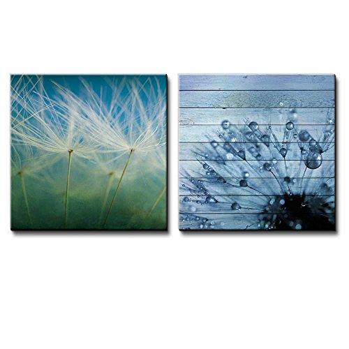 Dandelions on a Blue and Green Gradient Along with a Dandelion Covered in Rain Drops Over Wooden Panels