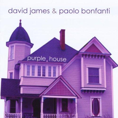 Purple house by david james paolo bonfanti on amazon for David james homes floor plans