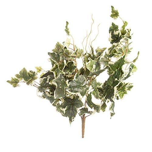 Ivy Cascading Silk Plant - Darice, English Ivy Bush White&Green Flower Plants