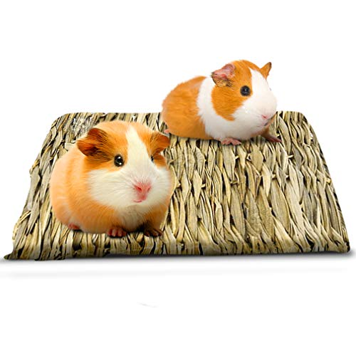 Seagrass Rabbit Mat - Protect Paws from Wire Cage - Treat Bunny's...