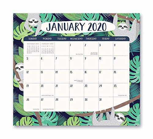 - Orange Circle Studio 2020 Magnetic Monthly Calendar Pad, August 2019 - December 2020, Jungle Life