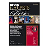 Ilford Galerie Prestige Smooth Pearl (8.5 x 11 in. - 100 Sheets)