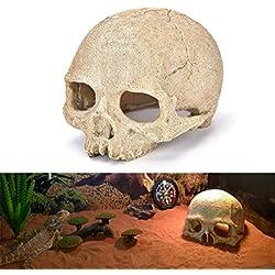 Clearance Sale!DEESEE(TM)Fish Tank Aquarium Ornament, Terrarium Decorations Resin Skull Human Skeleton