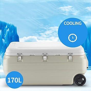 ZLL Nevera refrigeradora para autos Caja con ruedas de 170 litros ...