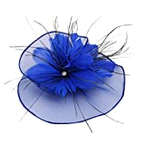 Napoo-Hat Women Mesh Feather Pearls Flower Cocktail Party Headdress Wedding Bridal Headpiece (Blue)
