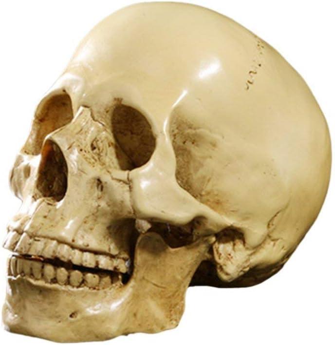 Flower Yundxi Realistic Skull Head Statue Human Skeleton Figurines Head Bone Model for Halloween Bar Home Table Decoration
