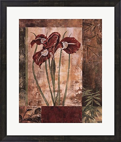 Jeweled Iris I by Maria Donovan Framed A - Lithograph Iris Shopping Results