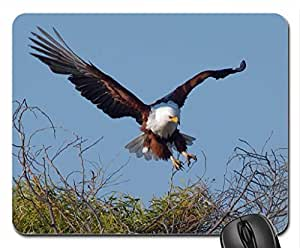 AFRICAN FISH EAGLE IN FLIGHT Mouse Pad, Mousepad (Birds Mouse Pad)