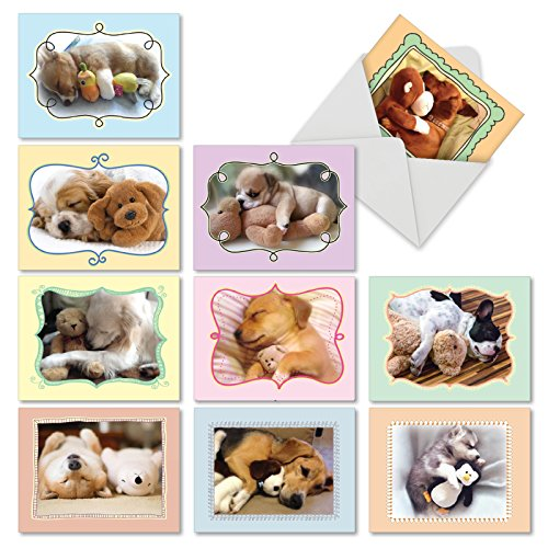 10 Assorted Puppy Note Cards w/ Envelopes (Small 4 x 5.12 Inch) - Assortment of All Occasion 'Cuddle Buddies' Blank Greeting Cards - Sleeping Dogs w/ Stuffed Animals - Notecard Stationery M6469OCBsl