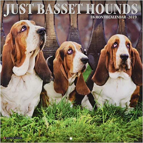Just Basset Hounds 2019 Wall Calendar (Dog Breed Calendar)