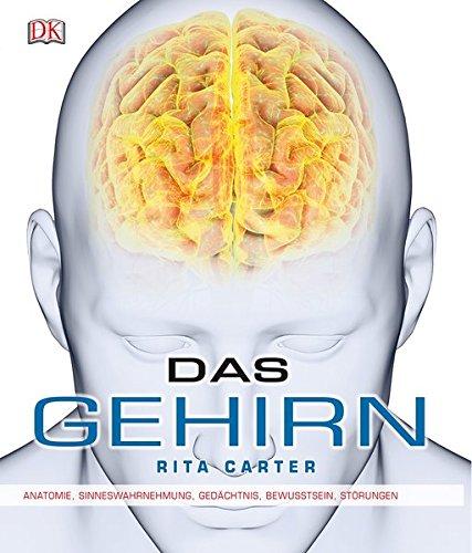 das-gehirn-anatomie-sinneswahrnehmung-gedchtnis-bewusstsein-strungen