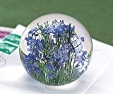Forget-Me-Not Round Resin Paperweight