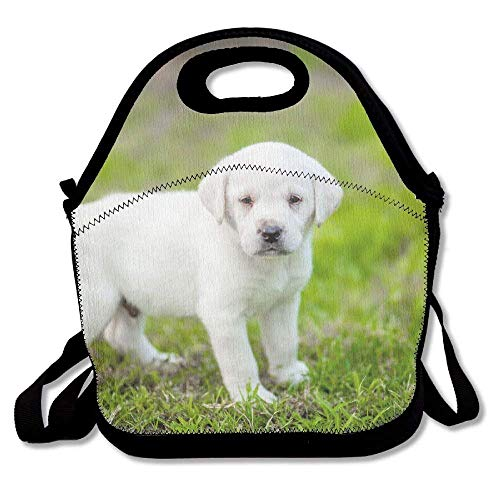 Punk Lunch Bag Reusable Lunch Tote Lunch Box Handbag For Womens Mens Kids ()