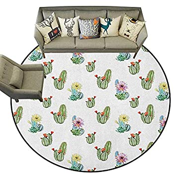 Image of Cactus,Indoor Outdoor Rugs Succulents Framework Different Types Gardening Bedding Plants Theme Seasonal Image D66 Super Soft Carpet Floor Mat Home Decor Home and Kitchen