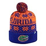 Florida Gators Official NCAA Subartic Beanie Cuffed Stocking Stretch Knit Sock Hat Cap by Top of the World 862750
