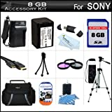 8GB Accessory Kit For Sony HDR-PJ710V, HDR-PJ760V, HDR-CX760V High Definition Camcorder Includes 8GB High Speed SD Memory Card + Replacement (2300Mah) NP-FV70 Battery + Ac / DC Charger + Case + Tripod + 3PC Filter Kit (UV-CPL-FLD) + Mini HDMI Cable + More