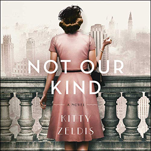 Book Cover: Not Our Kind: A Novel