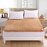 DHWJ WCCT Padded mattress,French velvet tatami mattress,Single double student dormitory bed mattress mat-B 180x200cm(71x79inch)