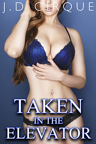 Taken In The Elevator (Taboo Explicit Public Erotica) (Tight Spaces Book 1)
