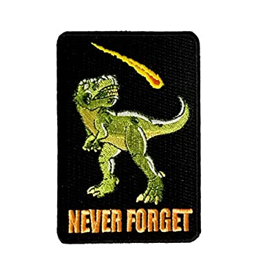 """Dinosaur Never Forget"" Asteroid & Tyrannosaurus Rex Humor - Iron on Embroidered Patch Applique"